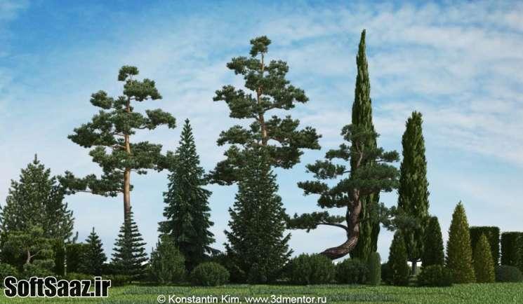 free download 3DMentor HQ Plants 2