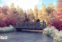 دانلود سی جی اکسيس شماره 115 CGAxis - درختان پاییزی
