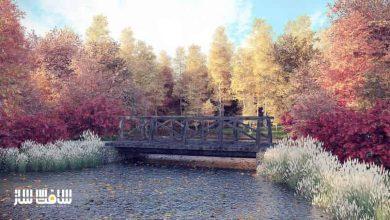 Photo of دانلود سی جی اکسیس شماره 115 CGAxis – درختان پاییزی