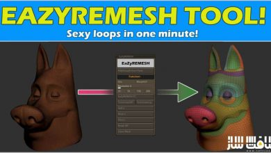 دانلود پلاگین EaZyremesh Tool برای ZBrush