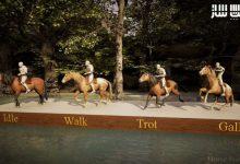 دانلود پروژه Horse Starter Kit برای آنریل انجین