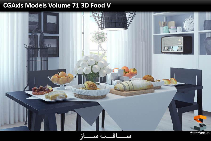 مدل غذا