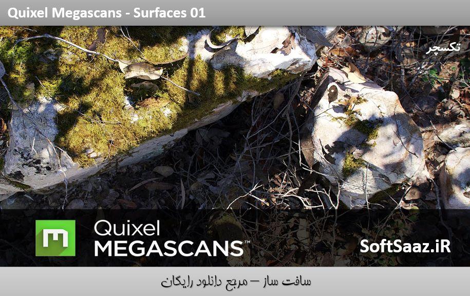 دانلود Quixel Megascan