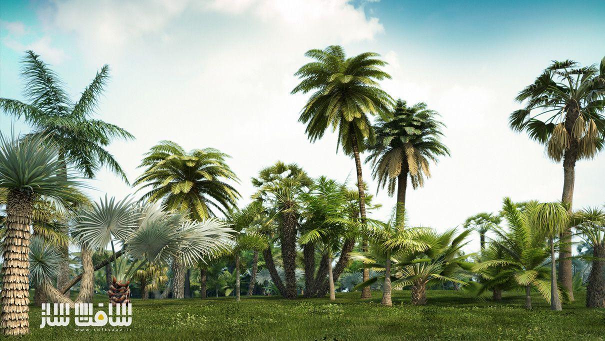 iTrees Palms vol.1