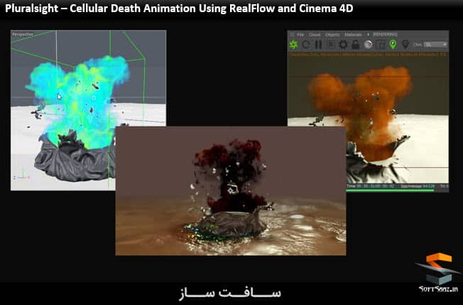 Cellular Death Animation Using RealFlow and Cinema 4D